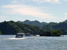 Boat Tour in Samana Bay Dominican Republic to Los Haitises National Park, Caverns and Mangroves.